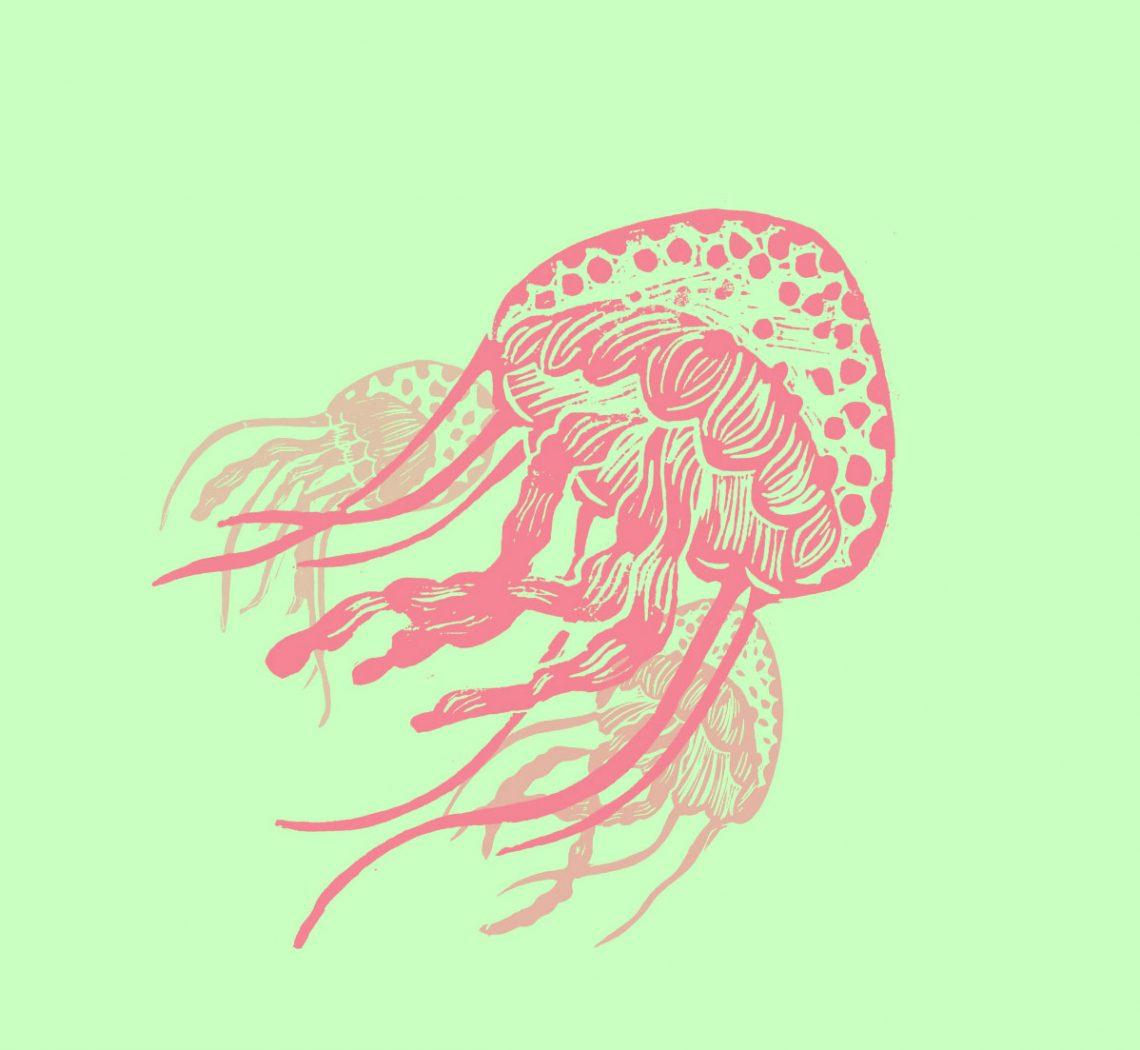 méduses en linogravure