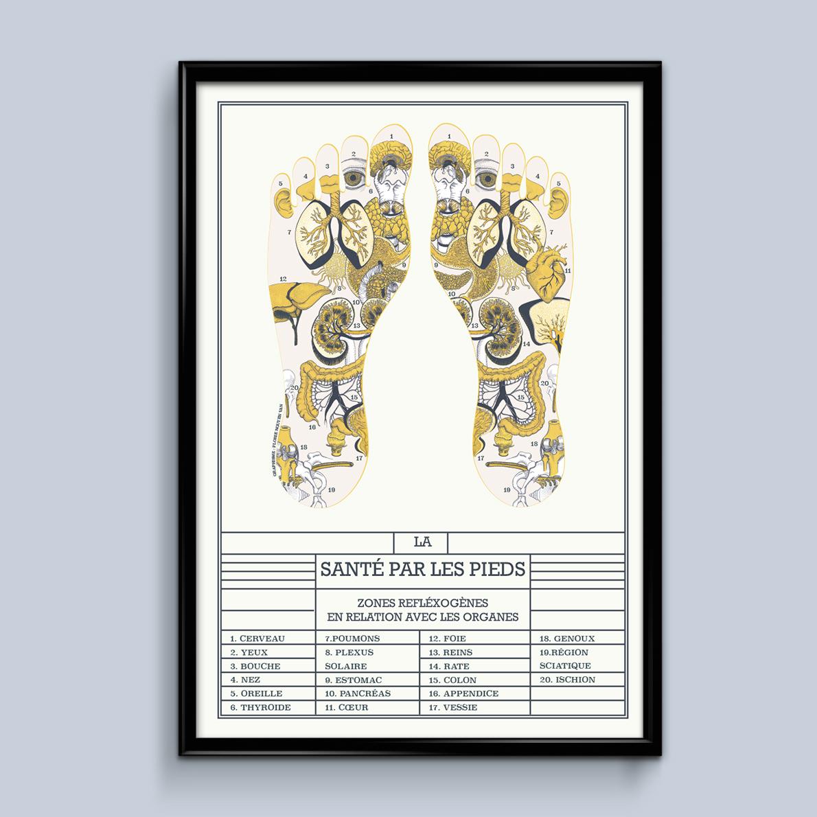affiche réflexologie, planche scientifique