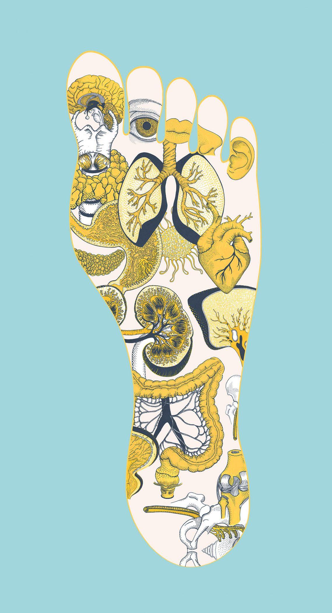 Affiche de reflexologie dessiné à la main au posca, dessin scientifique