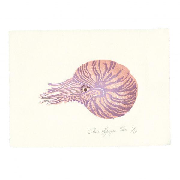 Linogravure nautile par Florie Nguyen Van