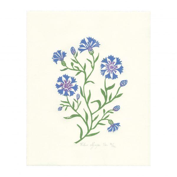 Linogravure Bleuets par Florie Nguyen Van
