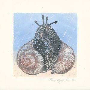 escargots érotiques