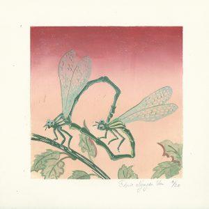 Linogravure libellules coeur