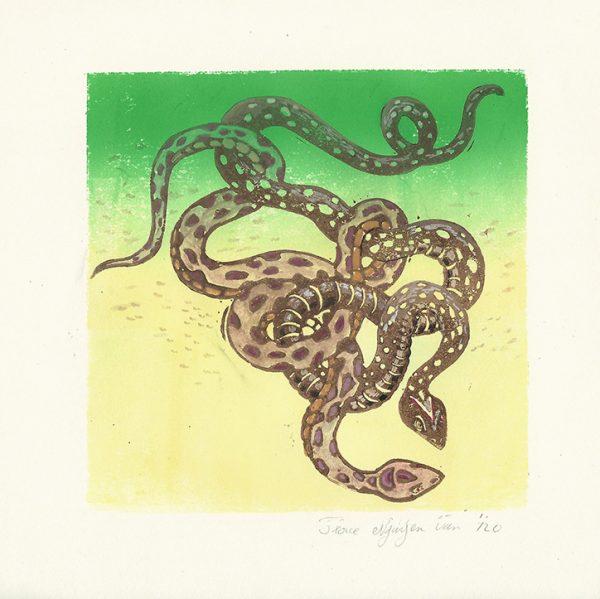 Serpents enroulés